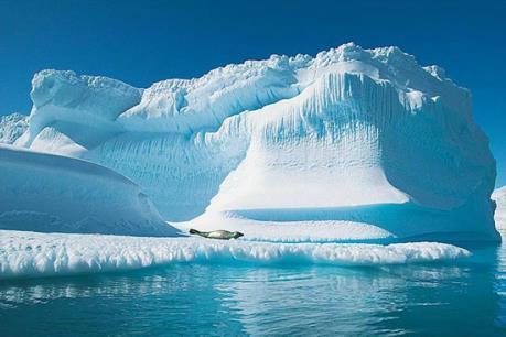 Đánh giá về tình trạng ô nhiễm và biến đổi khí hậu tại Nam Cực