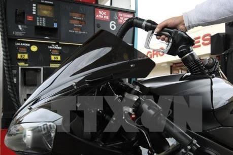 Sức tiêu thụ nhiên liệu của Mỹ chi phối giá dầu thế giới
