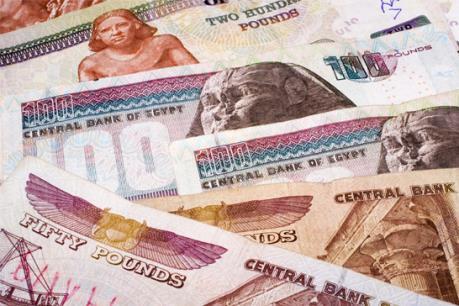 """IMF: Ai Cập đối mặt """"khủng hoảng"""" tiền tệ"""