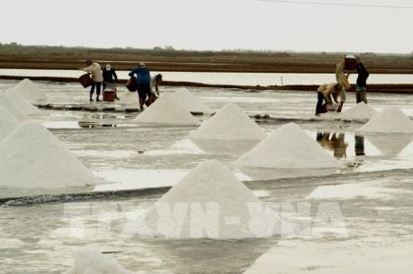 Để diêm dân sống được với nghề: Khi hạt muối chưa nuôi nổi người làm (Bài 1)