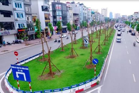 Hà Nội trồng thay thế cây chết tại Nguyễn Xiển - Nghiêm Xuân Yên