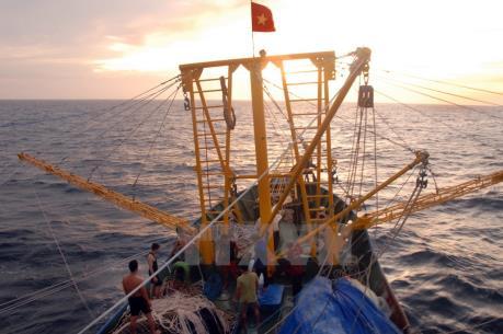Bình Định: Hai tàu cá gặp sự cố trên biển