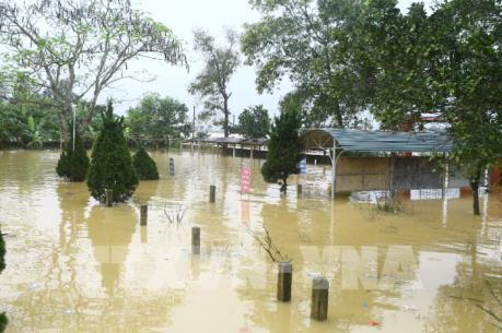 Bình Định: Mưa lũ gây ngập úng và chia cắt ở nhiều địa phương