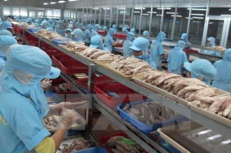 EU thúc đẩy xuất khẩu nông nghiệp sang các thị trường mới nổi