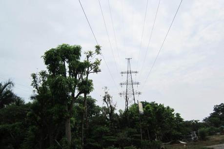 An toàn lưới điện cao áp tại miền Trung, Tây Nguyên – Bài 1: Địa hình phức tạp