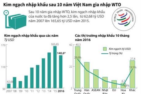 Kim ngạch nhập khẩu của Việt Nam 10 năm sau khi gia nhập WTO