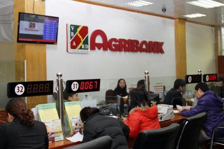 Agribank ưu đãi lãi suất dịp Tết Nguyên đán 2017