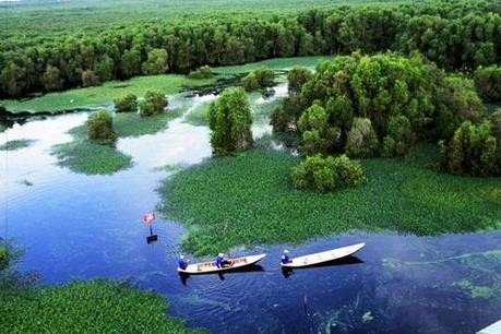 Đầu tư 90 tỷ đồng phát triển du lịch sinh thái Vườn Quốc gia Tràm Chim