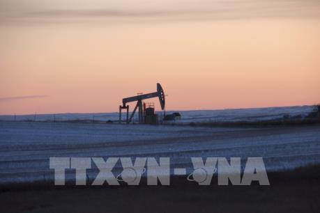 Giá dầu thế giới tăng sau chiến thắng của ông Donald Trump