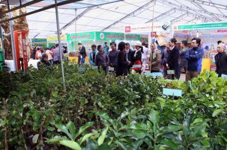 Festival quốc tế nông nghiệp vùng ĐBSCL sẽ diễn ra tại Cần Thơ