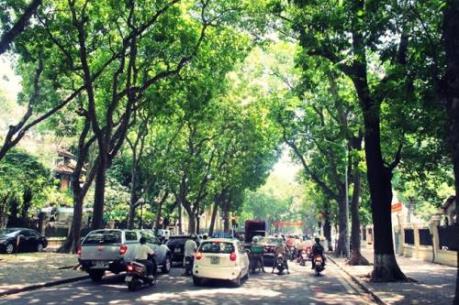Dự báo thời tiết: Miền Bắc nắng đẹp trong ngày Nhà giáo Việt Nam 20/11