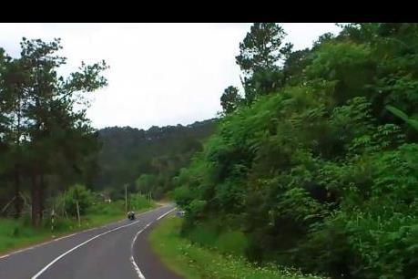 Thủ tướng có ý kiến về việc cải tạo đường qua đèo Mimosa