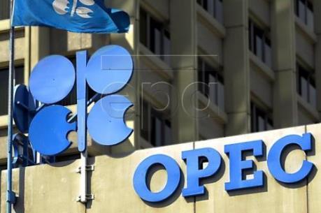 Saudi Arabia không tham dự cuộc họp ngày 28/11 với các nước sản xuất dầu ngoài OPEC