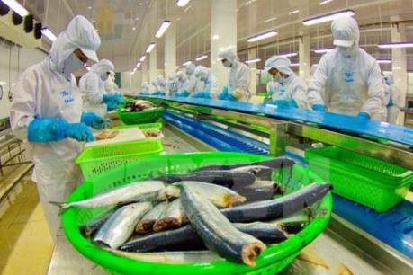 Liên kết trong sản xuất cá tra để tránh lúc thừa lúc thiếu