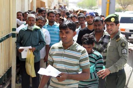 Lao động thời vụ người nước ngoài ở Australia có thể bị đánh thuế 15% thu nhập