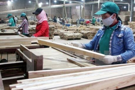 Hỗ trợ ngành công nghiệp gỗ Việt Nam mở rộng thị trường tại EU
