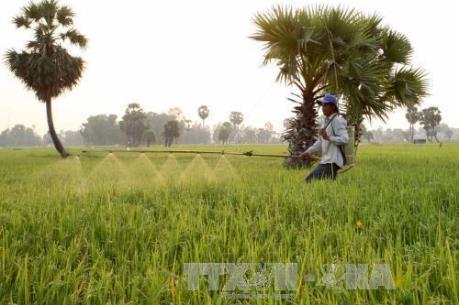 Đẩy mạnh kết nối công – tư trong phát triển nông nghiệp