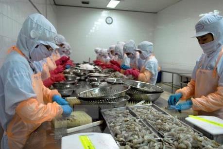 Tăng cường kiểm tra chỉ tiêu Sulfadiazine các lô hàng tôm xuất sang Nhật Bản