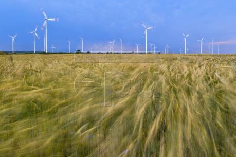 EU tham vọng dẫn đầu thế giới về năng lượng sạch