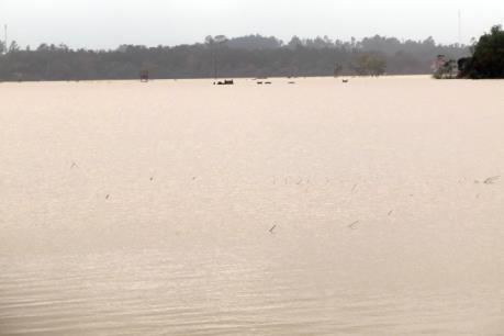 Các hồ thủy lợi, thủy điện ở Quảng Nam giảm xả nước để hạn chế ngập lụt