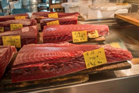 Xuất khẩu cá ngừ của Việt Nam sang EU tăng mạnh