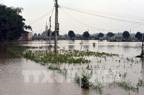 Dự báo thời tiết 13/12: Áp thấp nhiệt đới suy yếu, Nam Trung Bộ mưa lớn diện rộng