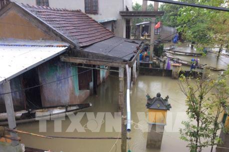 Thừa Thiên-Huế đề nghị Chính phủ hỗ trợ 1.000 tấn gạo và cây giống