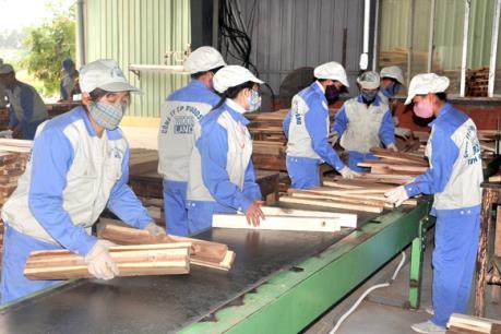Woodsland sử dụng 100% gỗ rừng trồng trong nước