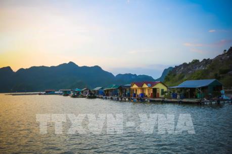 Du lịch Việt Nam đạt mức tăng trưởng kỷ lục