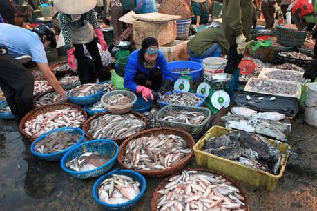 """Thị trường hải sản ở Hà Tĩnh đã """"tăng nhiệt"""" trở lại"""