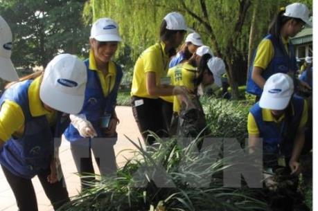 Hà Nội đảm bảo vệ sinh môi trường dịp năm mới 2017