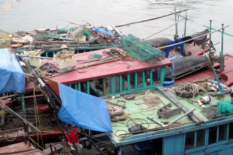 Xử lý vi phạm trong khai thác thủy sản trên vịnh Hạ Long