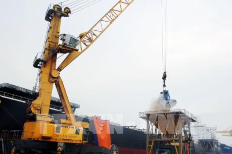 Cảng Cái Lân xếp dỡ mã hàng đầu tiên năm 2017
