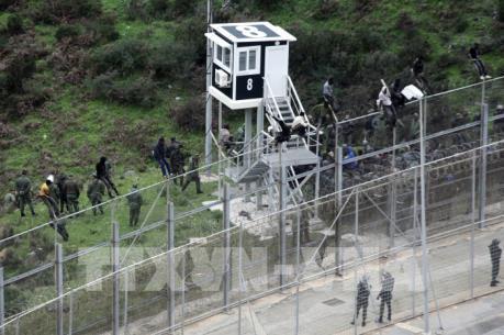 Vấn đề người di cư: Căng thẳng tại hàng rào biên giới Maroc-Tây Ban Nha