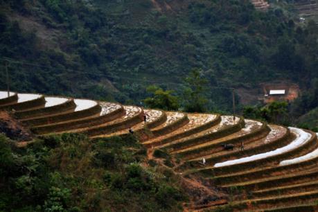 Hướng kết hợp mới giữa nông nghiệp với phát triển du lịch