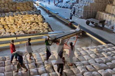Bắt đầu rà soát Nghị định 109 về kinh doanh xuất khẩu gạo