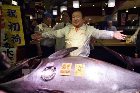 """Cá ngừ vây xanh """"vua"""" nặng 212 kg được bán đấu giá hơn 14 tỷ đồng"""