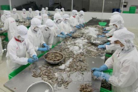 Xây dựng cụm chế biến hải sản tập trung Cát Khánh