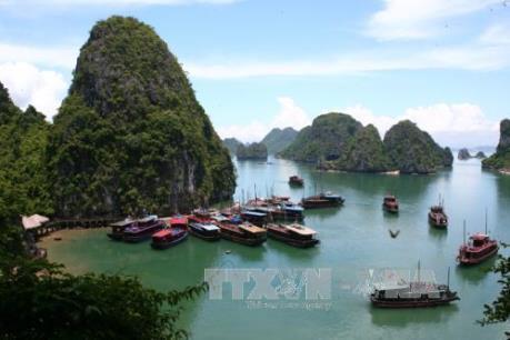 Dừng tàu du lịch vỏ gỗ - chủ trương mới của Quảng Ninh