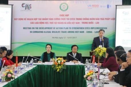 Hợp tác tăng cường thực thi CITES