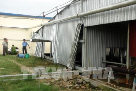 Phó Thủ tướng Vũ Đức Đam: Khẩn trương điều tra vụ tai nạn nghiêm trọng ở Phú Yên