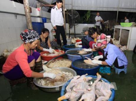 Đề xuất cấm bán gia cầm sống chưa giết mổ tại chợ
