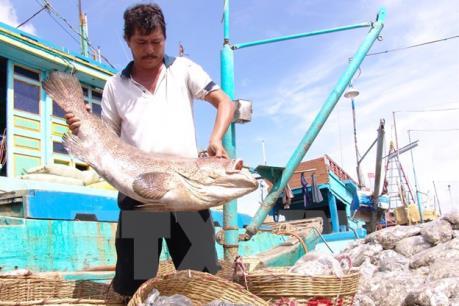 Mỹ siết chặt thủy sản nhập khẩu