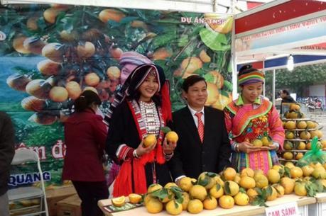 Khai mạc Hội chợ Xuân Giảng Võ 2017