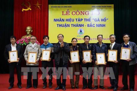 Công nhận nhãn hiệu tập thể Gà Hồ-Bắc Ninh