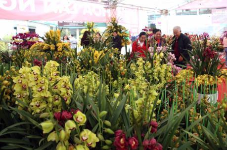 Khai mạc Hội chợ nông, lâm thủy sản Xuân Đinh Dậu
