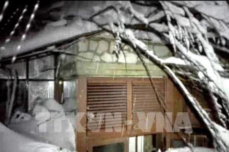 Italy: Nhiều người chết do tuyết lở sau động đất