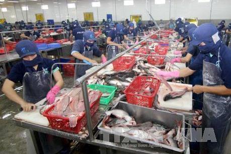 Algeria hiện là thị trường xuất khẩu lớn thứ 4 của Việt Nam tại châu Phi
