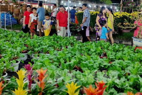 Tp. Hồ Chí Minh khai mạc Hội hoa xuân Đinh Dậu 2017