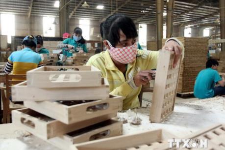 Kim ngạch xuất khẩu gỗ đạt mức kỷ lục trong năm 2016